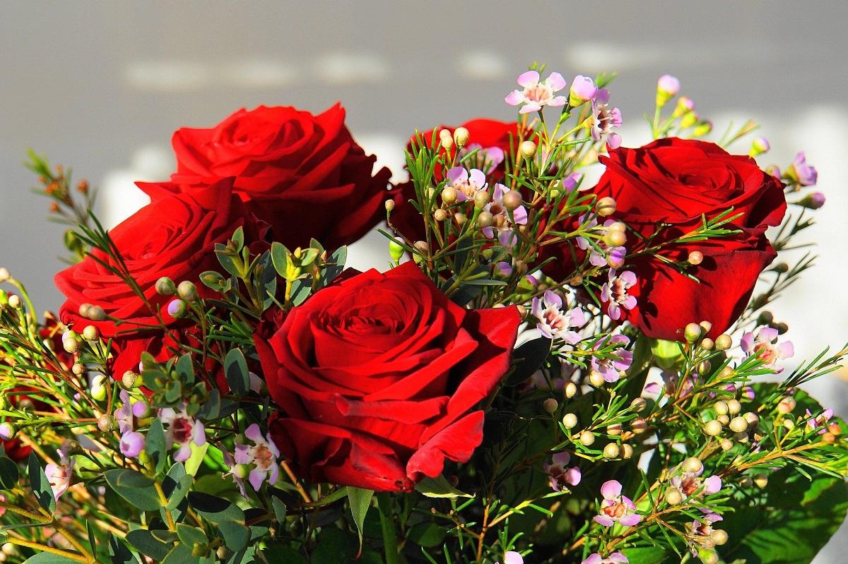 san-valentino:-assofioristi,-per-fioristi-c'e-poco-da-festeggiare,-margini-dimezzati-per-aumento-record-dei-fiori