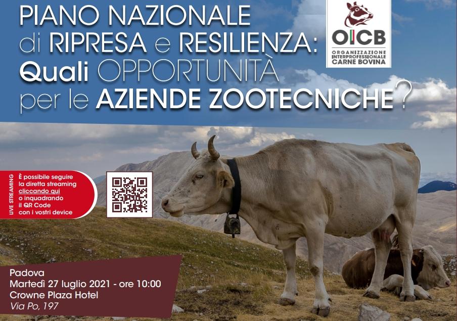 """Fiesa, a Padova OICB organizza il confronto: """"PNRR. Quali opportunità per le aziende zootecniche?"""""""
